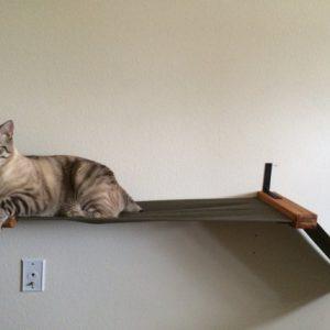 Беговая дорожка для кошек средняя