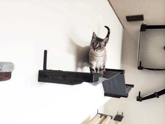 Беговая дорожка для кошек большая