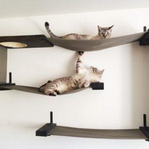 Комплекс для кошек «Лабиринт»