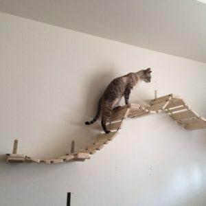 Мост для кошек «Прогулочный»