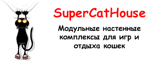 SuperCatHouse